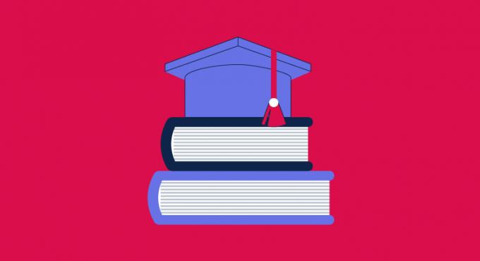 Mehrwertsteuer_Bildungssektor